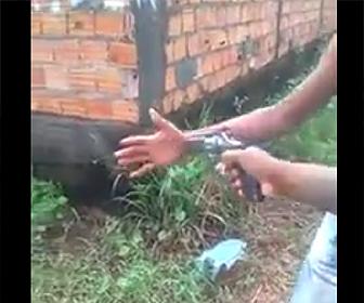泥棒が手のひらを撃たれる