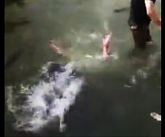 浅い川で溺れる
