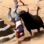 【動画】牛追い祭りで男性が暴れ牛の餌食に。何度も角で突かれ死亡