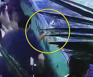 サメに噛まれる少女