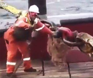 船上で事故