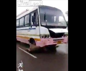 バスに引きずられる牛