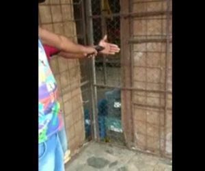 泥棒が手のひらを銃で撃たれる