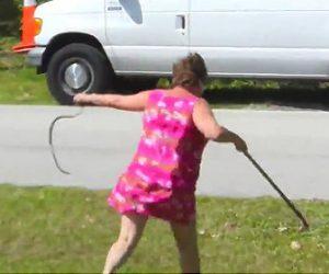 ヘビを駆除するおばあちゃん