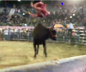 ロデオで男性が暴れ牛にはね飛ばされる