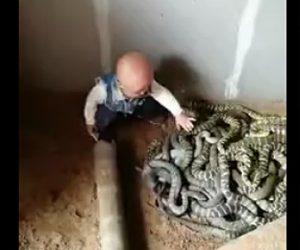 幼児がヘビに興味津々