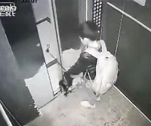 エレベーターに乗る少年がイタズラでドアを傘を挟んでしまい