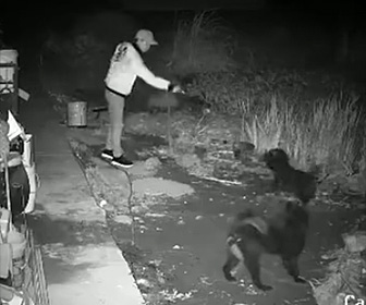 【動画】男が2匹の犬に毒液をかけて殺す犯行の一部始終