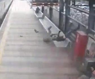 猛スピードの電車に飛び込んだ男性が吹き飛ばされホームにいる人達に…