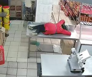 【動画】猫が怖い女性店員。店に飛び込んできた猫から必死に逃げる