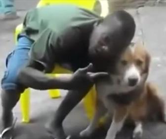 【動画】知らない犬にキスとしようとした男性。後悔する
