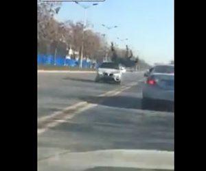 【動画】農場から逃げ出した馬が車道を走るBMWに突っ込んでしまう衝撃事故