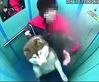 【動画】犬とエレベーターに乗るがリードがドアに挟まったまま動き出し犬が首つり状態に