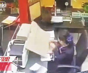【動画】オフィスで仕事中の女性の上に猫が降って来る衝撃映像