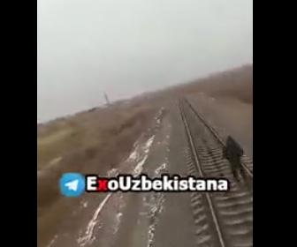 【動画】線路の上を歩くヘッドフォンをした少女に後ろから電車が迫って来る