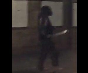 【動画】マチェーテを振り回す男がテイザー銃で撃たれ取り押さえられる衝撃映像