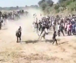 【動画】猛スピードで走る馬の写真を撮ろうとする男性に悲劇が…