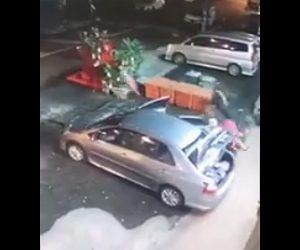 【動画】車を降りた女性に強盗が襲いかかるが、包丁を振り回し強盗を撃退する