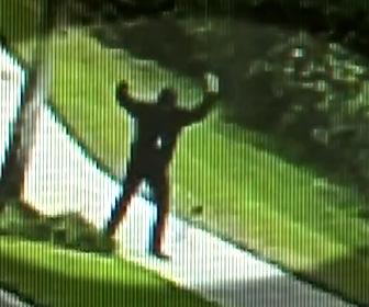 【動画】歩道を歩く男性が近づいて来るコヨーテを蹴り飛ばす衝撃映像