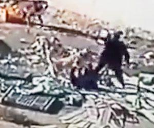 【動画】野犬に男性が襲われてしまう衝撃映像