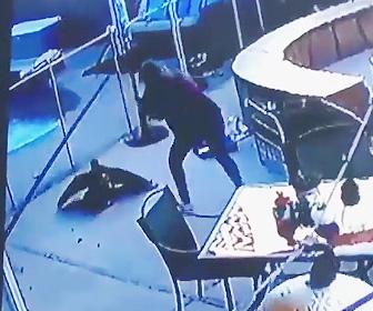 【動画】ペットの小型犬に鷹が襲いかかる。飼い主の女性が鷹と必死に戦う衝撃映像