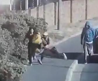 【動画】歩道を歩く女性が車から降りてきた強盗2人に襲われ必死に逃げるが…