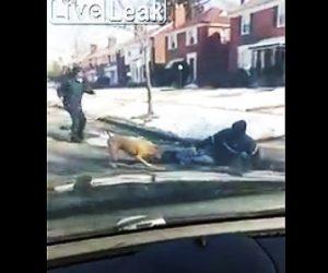 【動画】郵便配達人にピットブルが襲いかかる衝撃映像