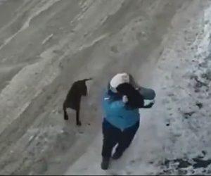 【動画】小型犬を散歩する女性に闘犬が襲いかかり必死に女性が小型犬をかばおうとするが…