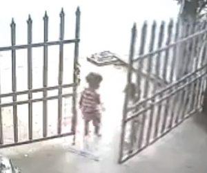 【動画】門を開け車道に出てしまった幼児。母親が追いかけるが…