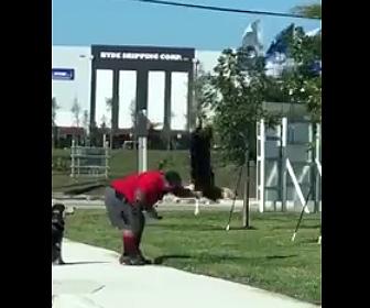 【動画】男が散歩している犬を地面に叩きつける衝撃映像