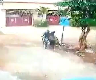 【動画】バイクに乗る男性に猛スピードの牛が突っ込んで来る恐ろしい映像