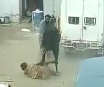 【動画】肉屋の男性VS牛 牛が猛スピードで男性に突っ込んで行く衝撃映像