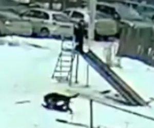【動画】公園で遊ぶ子供2人に野良犬が襲いかかる衝撃映像