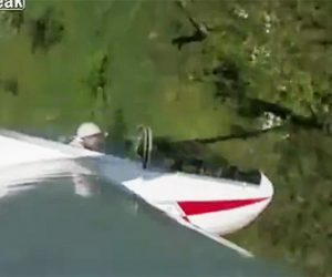 【動画】グライダーの翼が木に激突し地面に突っ込んでしまう衝撃映像