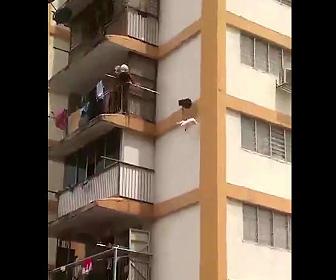 【動画】マンション10階で動けなくなった猫を棒で落とし…