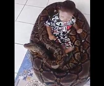 【動画】小さな子供が巨大な蛇と遊ぶ衝撃映像