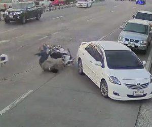 【動画】左折する車に直進するバイクが後ろから突っ込んでしまいバイクライダーが宙を舞う