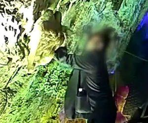 【動画】観光客の男3人が鍾乳石を石で叩き折り盗んでしまう衝撃映像