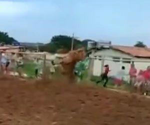 【動画】ロデオで暴れ牛が柵を乗り越え恐ろしい事に…