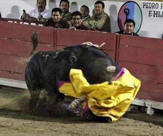 【動画】女性闘牛士が暴れ牛に顎を破壊されてしまう衝撃映像