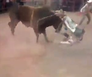 【動画】暴れ牛に乗ったカウボーイが牛から降りようとするが紐が足に引っかかり…