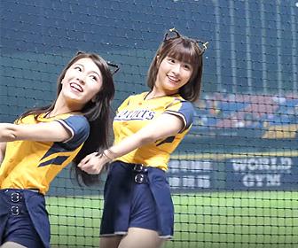 【動画】球場でダンスをする台湾のチアリーダー<チュンチュン>が可愛すぎる