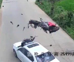 【動画】猛スピードのバイクと車が正面衝突。バイクは宙を舞いライダーはフロントガラスに突っ込む