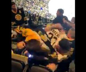 【動画】ホッケースタジアムで客数人が激しい殴り合いになる衝撃映像