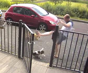 【動画】散歩している飼い犬を猫に襲われ怒った飼い主が衝撃の行動