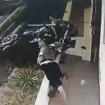 【動画】バイクが猛スピードで家の壁に突っ込んでしまう衝撃映像