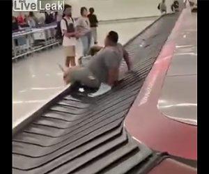 【動画】太った男性が空港の手荷物ターンテーブルから抜け出せない衝撃映像