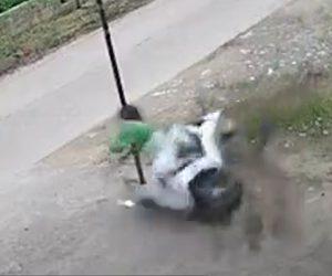 【動画】女性が運転するスクーターがカーブを曲がり切れず柱が顔面に直撃してしまう