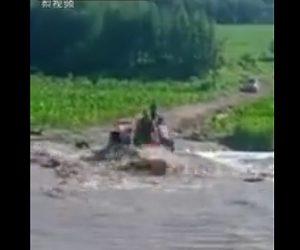 【動画】トラクターが増水した川を渡ろうとするが流されてしまう衝撃映像