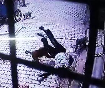 【動画】道を歩く男性に猿達が飛びかかってくる衝撃映像
